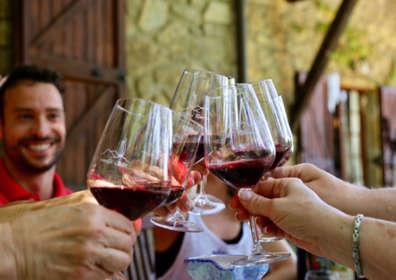 Démystifier les agences d'importation privée de vins